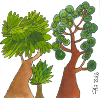 baobab pratica metamorfica