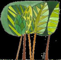 pratica metamorfica cinque alberi
