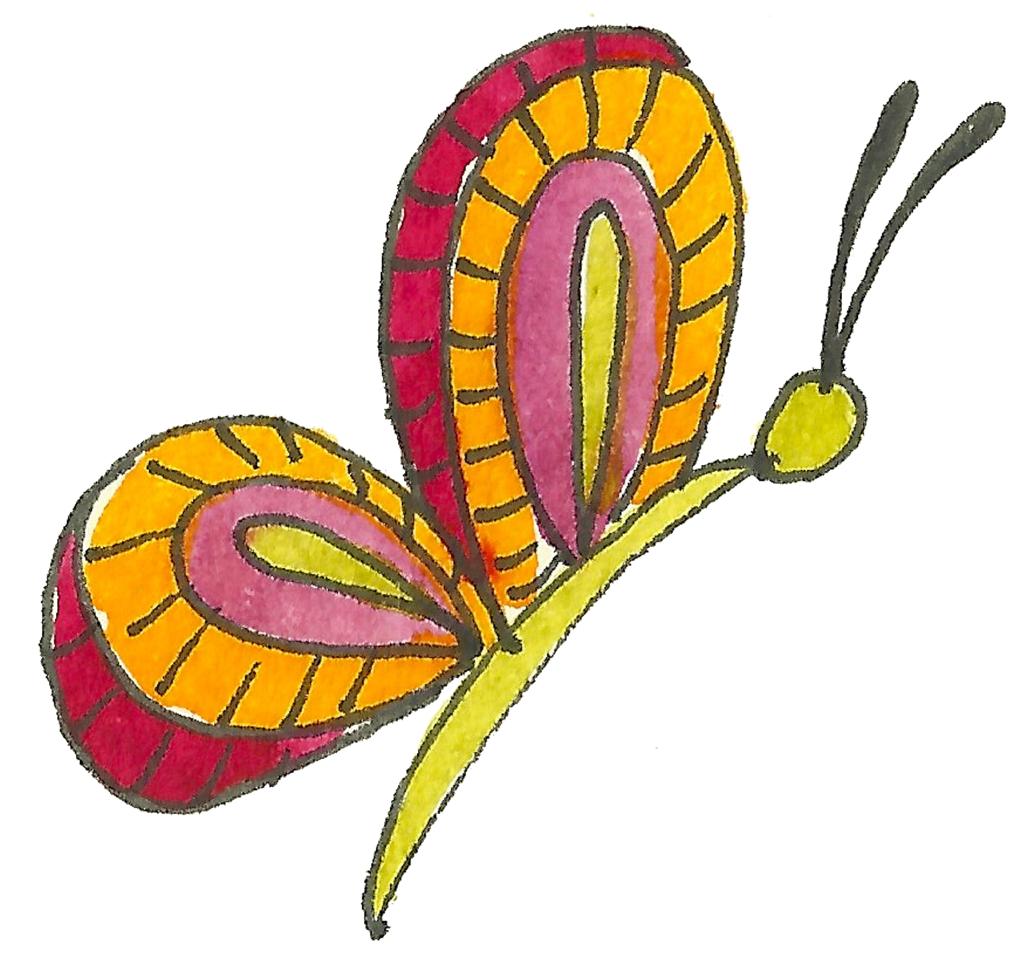 pratica metamorfica farfalla